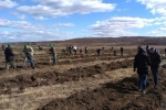 Всероссийская акция «Живи, лес!» прошла в Амурской области. В Благовещенском районе было высажено около 6000 саженцев лиственницы.