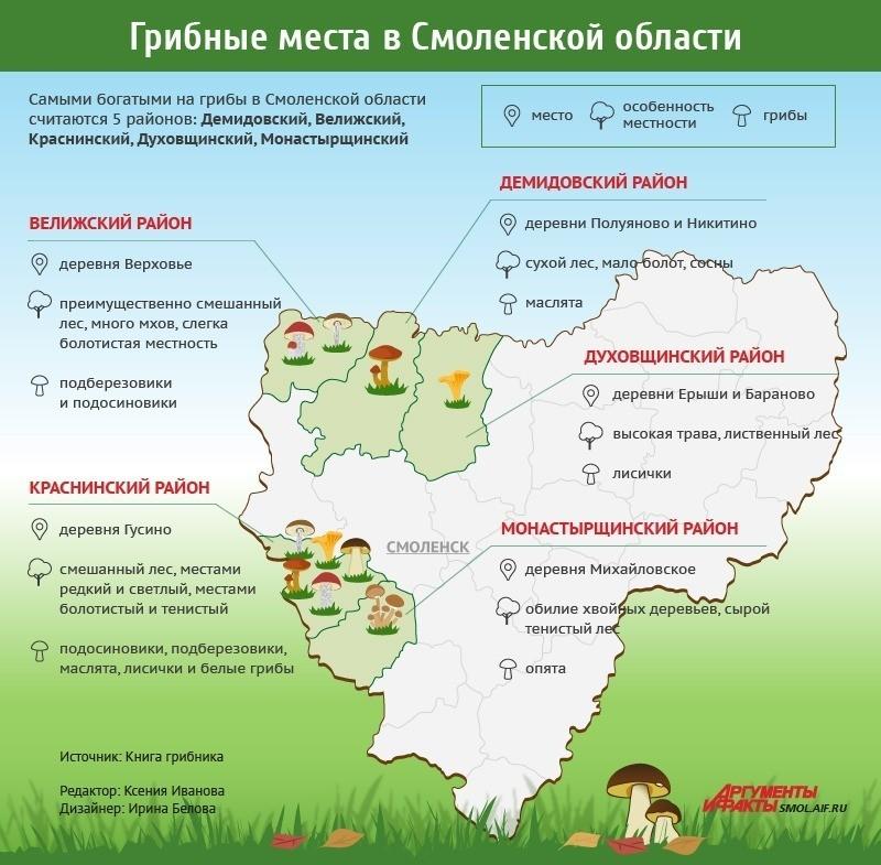 Грибные места Смоленской области
