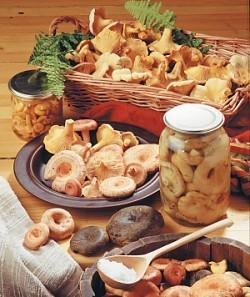 Соление грибов