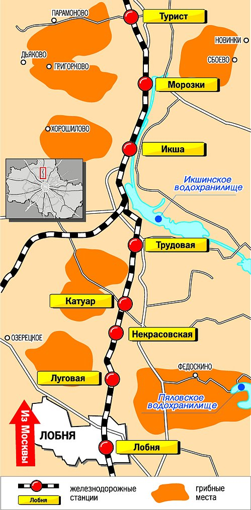 Грибные места, Савеловское
