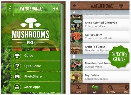 Программа Грибы Pro для владельцев iPhone и iPad