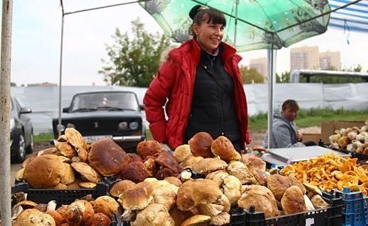 На стихийных рынках грибы лучше не покупать. Фото: из архива «КП».