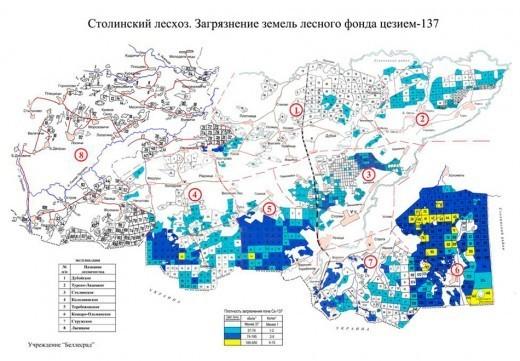 В каждом лесничестве есть карты леса, на которых указаны места, где сбор грибов и ягод запрещен.