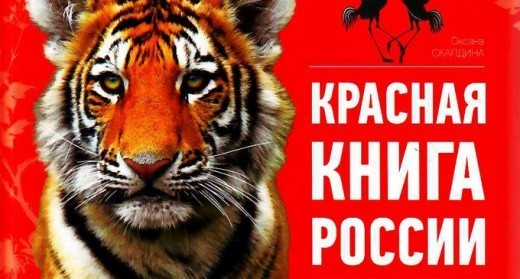 Министерство природных ресурсов и экологии к концу 2015 года выпустит обновленное издание Красной книги, из которой можно будет узнать о наиболее редких растениях и животных России.