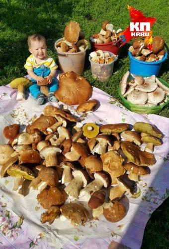 Семья из Уфы собрала в Башкирии гигантские грибы