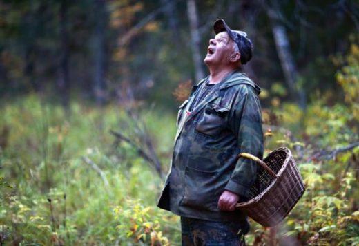 В связи с массовым сбором грибов и ягод лесхозы Беларуси усиливают контроль за соблюдением природоохранного законодательства. Работника лесной охраны под каждым деревом не поставишь, поэтому большая ставка делается на фотоловушки.