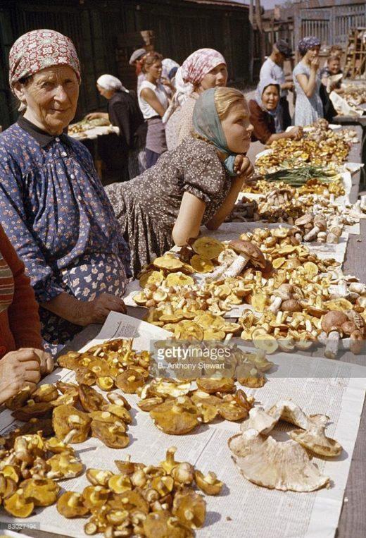 Американский фотограф Anthony Stewart, сопровождавший президента Никсона во время поездки по СССР в 1959 году, запечатлел момент продажи грибов во время посещения московского Даниловского рынка.