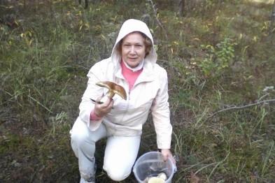 Пора собирать белые грибы