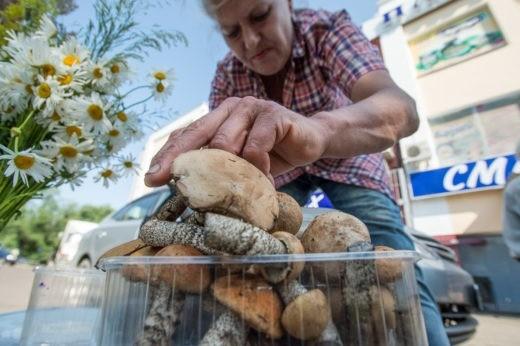 На благовещенских микрорынках появились первые подосиновики, которые обнаружили журналисты обнаружили на прилавках уличных торговцев. Фото: Андрей Ильинский