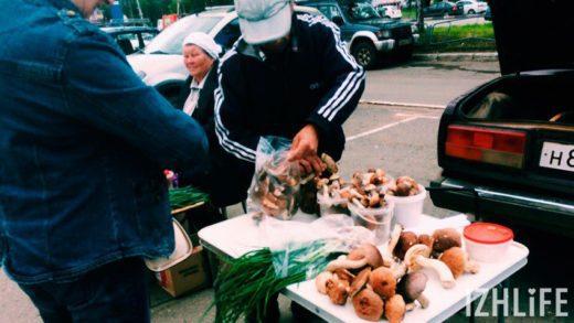 Лето в Ижевске выдалось дождливое и холодное, и поэтому на рынках города можно купить рыжики, подберезовики, подосиновики, опята и белые грибы.