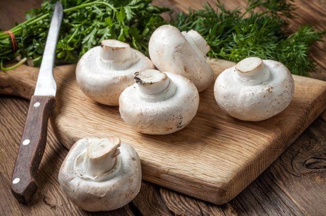В Югре проходит фотоконкурс, посвященный грибам