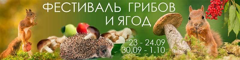 15-й юбилейный Фестиваль Грибов и Ягод в Санкт-Петербурге