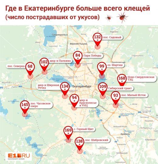 Карта районов Екатеринбурга, где чаще всего нападают кровососы