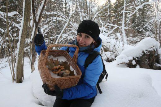Вязниковцам официально разрешили собирать грибы и ягод