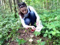 Как найти, собрать и обезвредить первые грибы