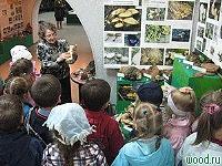 В Красноярском крае организована выставка грибов