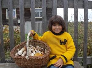 Крепкий белый гриб, ароматный рыжик, красавец подосиновик, справный подберезовик — для каждого найдется место в корзинке