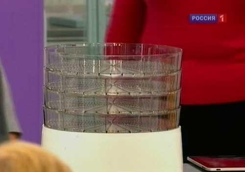 sushjonye-griby-02