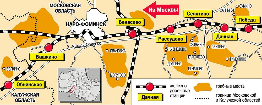 Грибные места, Киевское направление