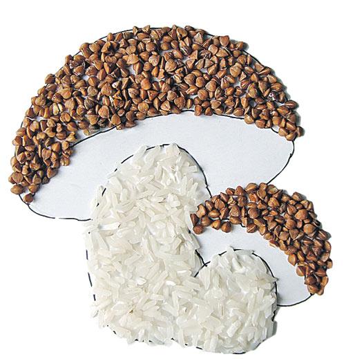 2. Намажь клеем шляпки и ножки грибов и засыпь их аккуратно гречкой и рисом
