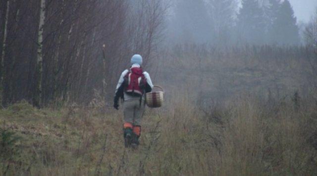 Жители Хмельницкой области Украины будут платить налог за сбор грибов и ягод