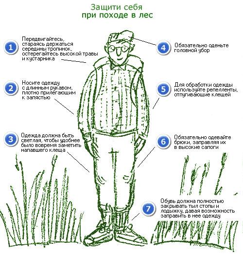 При посещении мест обитания клещей надевайте защитную одежду и пользуйтесь репеллентами.
