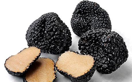 """Черный трюфель среднего размера - величиной с яблоко, мелкие грибы - не больше грецкого ореха или вишни, а самые крупные представители """"породы"""" весят более килограмма"""