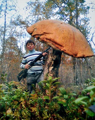 Снимок от Александра Спирина стал лучшим по мнению редакционного жюри.