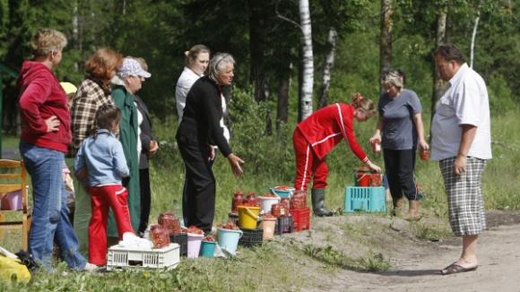 За торговлю грибами и ягодами с рук могут ужесточить наказание