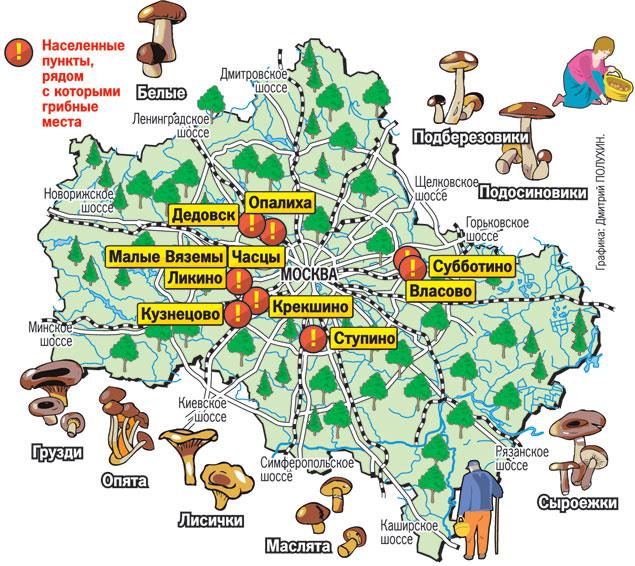 Грибная карта Подмосковья