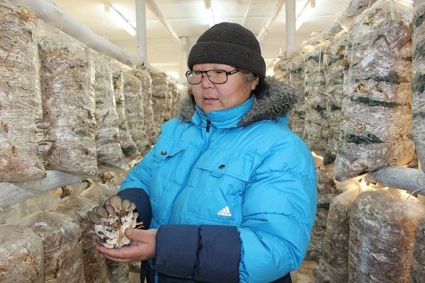 Учительница из Бурятии открыла ферму по выращиванию грибов
